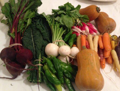 The Mediterranean Diet is a Fertility Diet