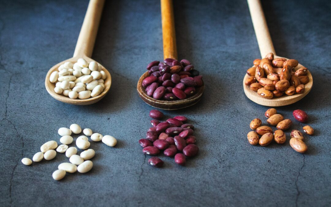 Plant-based Protein for Fertility