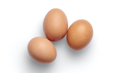 How can I improve egg quality?